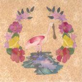 A FLORIDA ALBUM-ROSEATE SPOONBILL